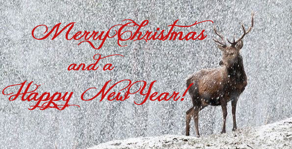 merry christmas and a happy new year  sportsman s cove clipart merry christmas kids clip art merry christmas brother and family